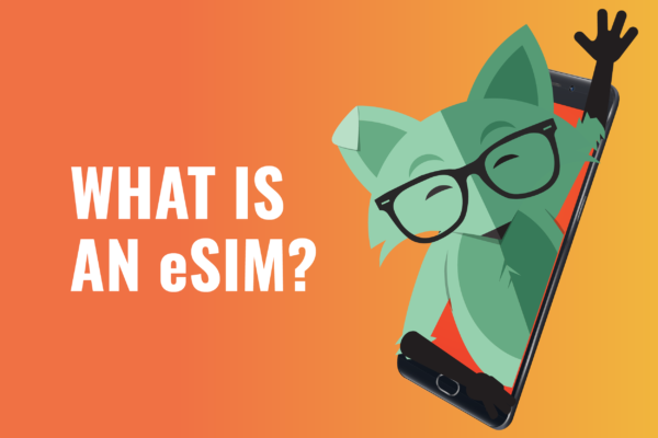 What is an eSIM title with Mint Fox