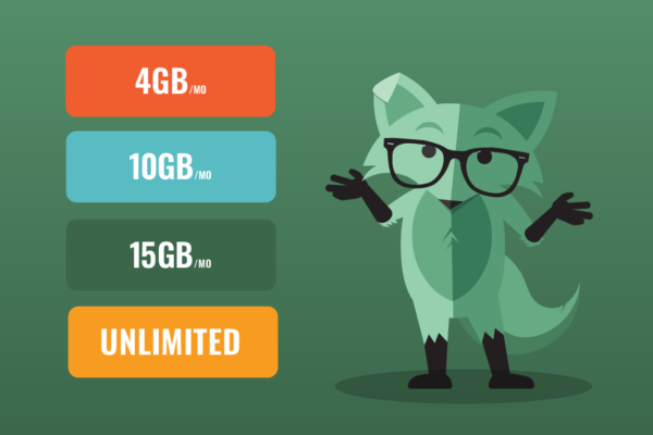 Mint Fox explaining how much data you need next to different phone data plans