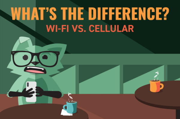 Mint Fox at a cafe with the title What's the Difference between wifi vs. cellular data
